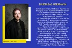 BARNABS-HERRMANN-DE-WEB